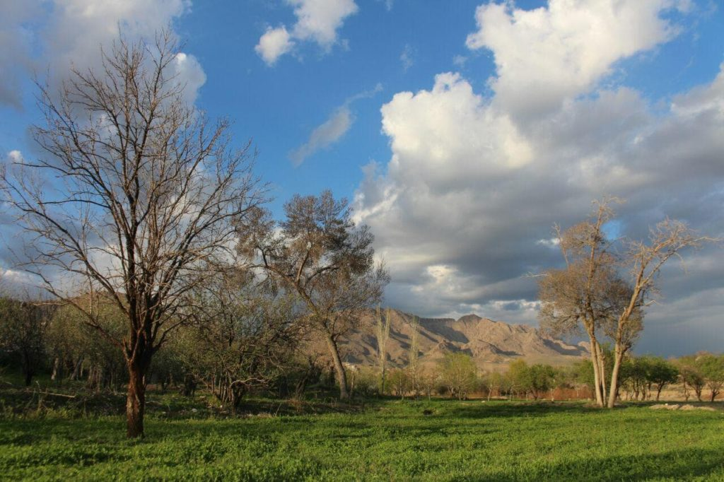 دامنههای کوه آریا